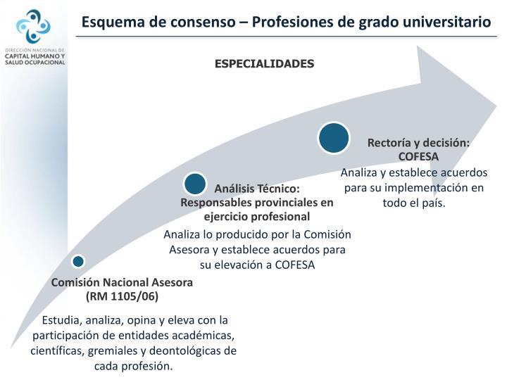 Esquema de consenso – Profesiones de grado universitario
