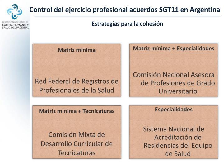 Control del ejercicio profesional acuerdos SGT11 en Argentina