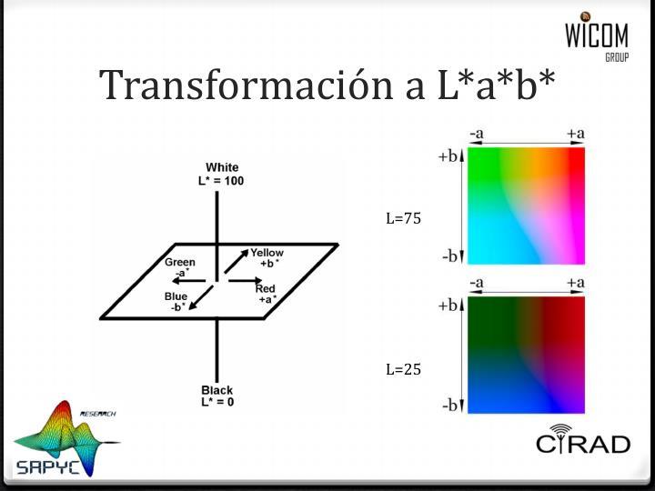 Transformación a L*a*b*