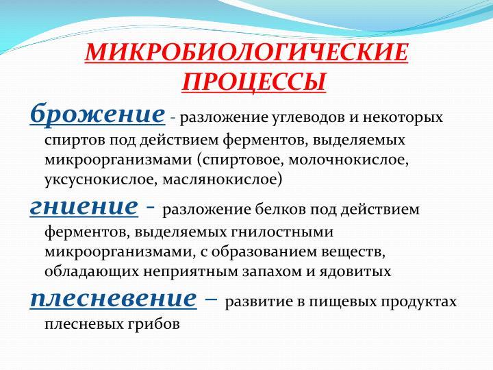 МИКРОБИОЛОГИЧЕСКИЕ ПРОЦЕССЫ