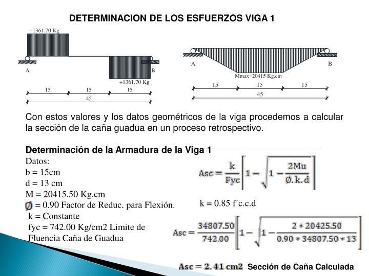 DETERMINACION DE LOS ESFUERZOS VIGA 1