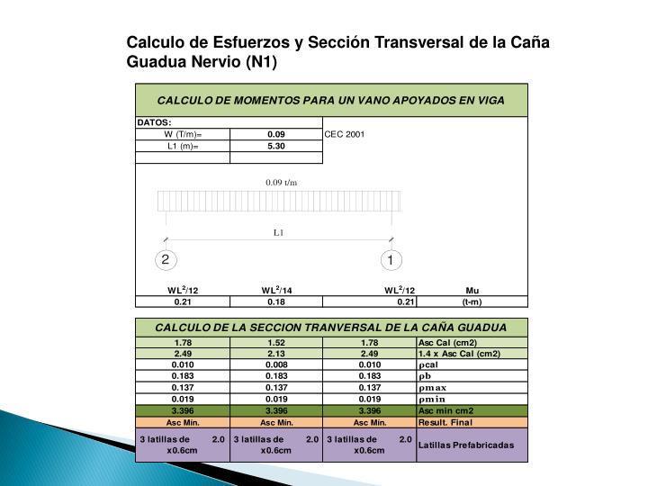 Calculo de Esfuerzos y Sección Transversal de la Caña Guadua Nervio (N1)