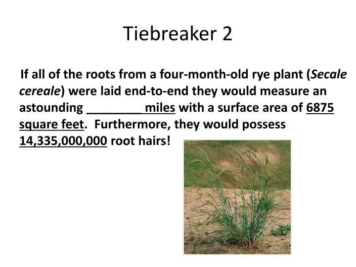Tiebreaker 2