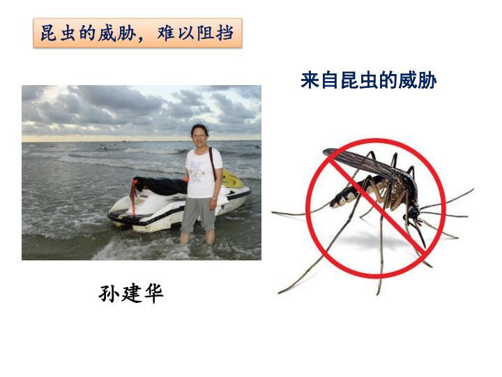 昆虫的威胁,难以阻挡