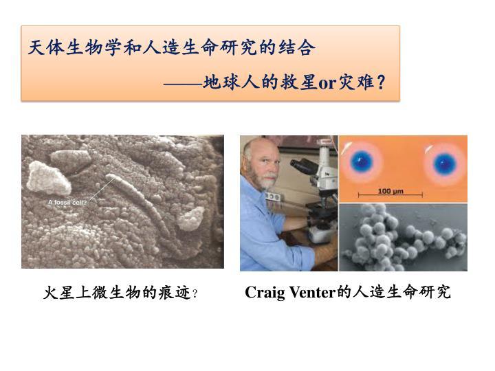 天体生物学和人造生命研究的结合