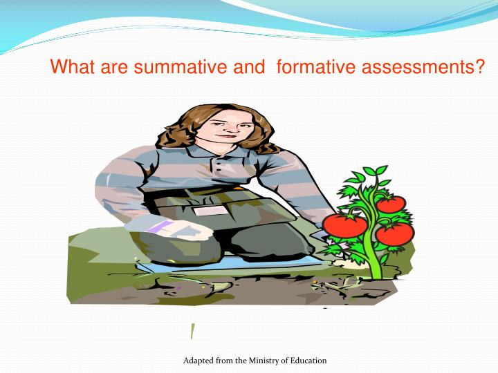 What are summative and  formative assessments?
