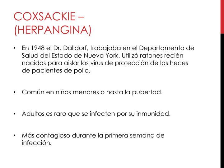 Coxsackie – (