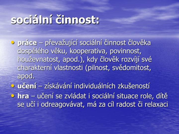 sociální činnost: