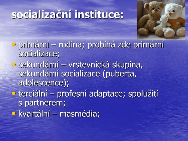 socializační instituce: