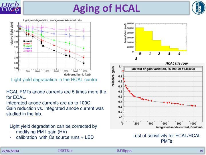 Aging of HCAL
