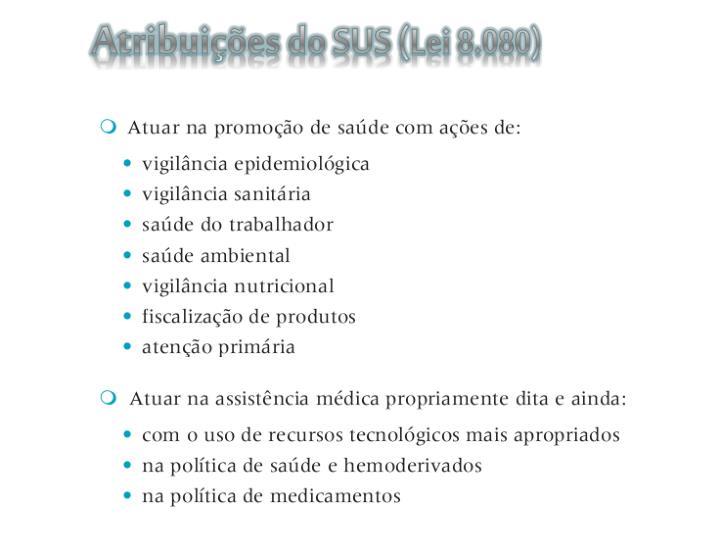 Atribuições do SUS (Lei 8.080)