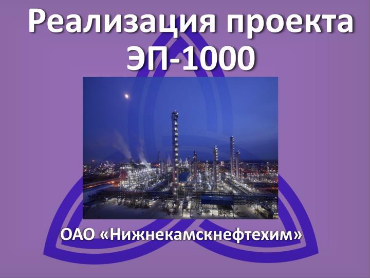 Реализация проекта ЭП-1000
