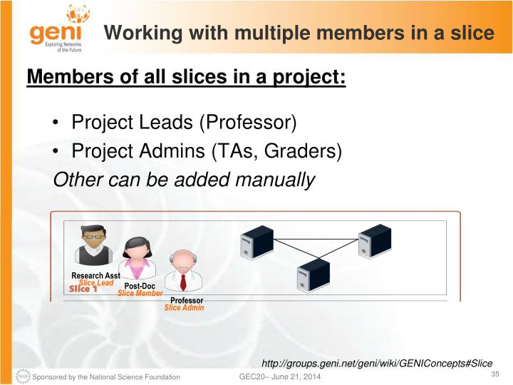 Working with multiple members in a slice