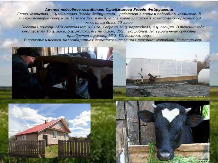 Личное подсобное хозяйство: Сулейманова Резеда