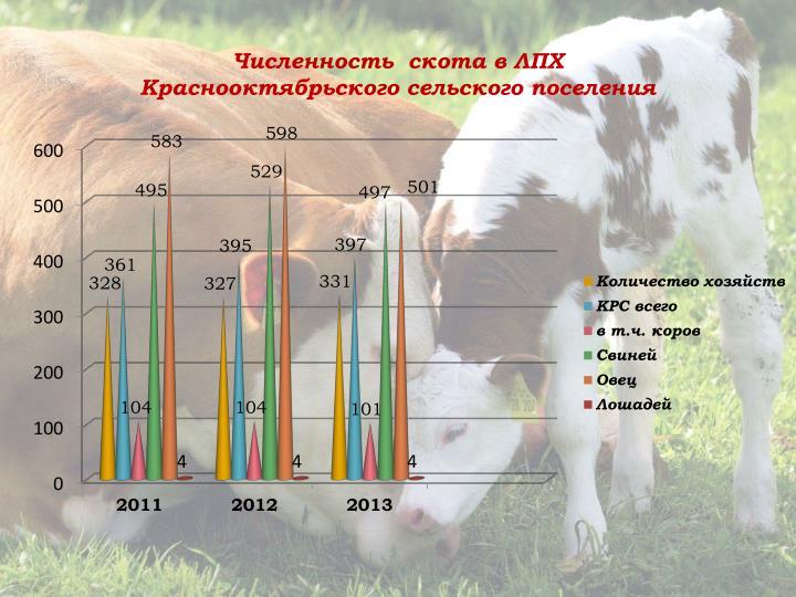 Численность  скота в ЛПХ