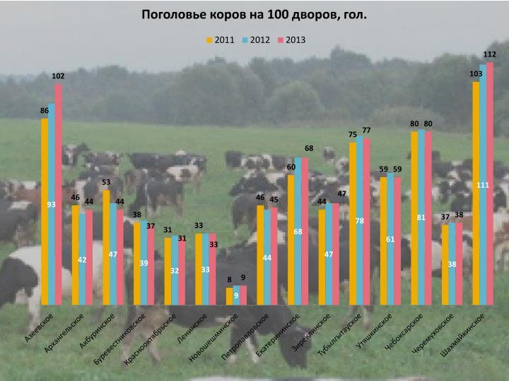 Поголовье коров на 100 дворов, гол.