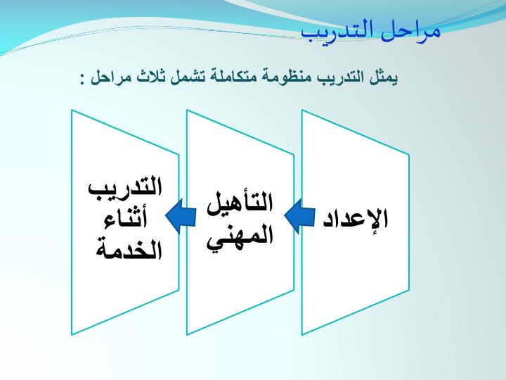 مراحل التدريب