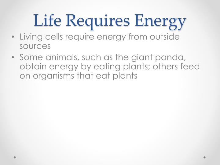 Life Requires Energy
