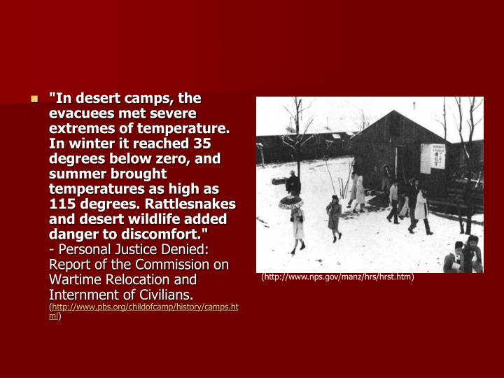 """In desert camps, the evacuees met severe extremes of temperature. In winter it reached 35 degrees below zero, and summer brought temperatures as high as 115 degrees. Rattlesnakes and desert wildlife added danger to discomfort."""