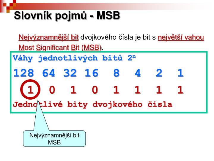 Slovník pojmů - MSB