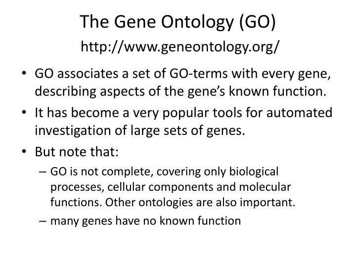 The Gene Ontology (GO)