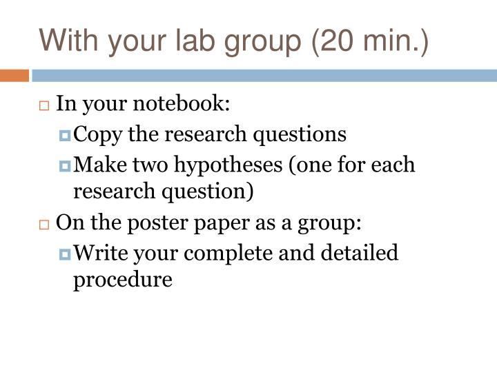 With your lab group (20 min.)
