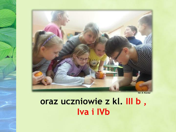 fot. A. Kucisz
