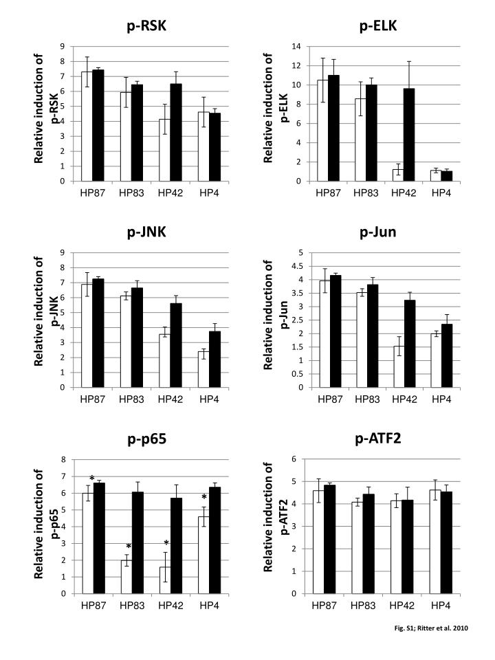 Relative induction of p-ELK