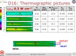 d16 thermographic pictures