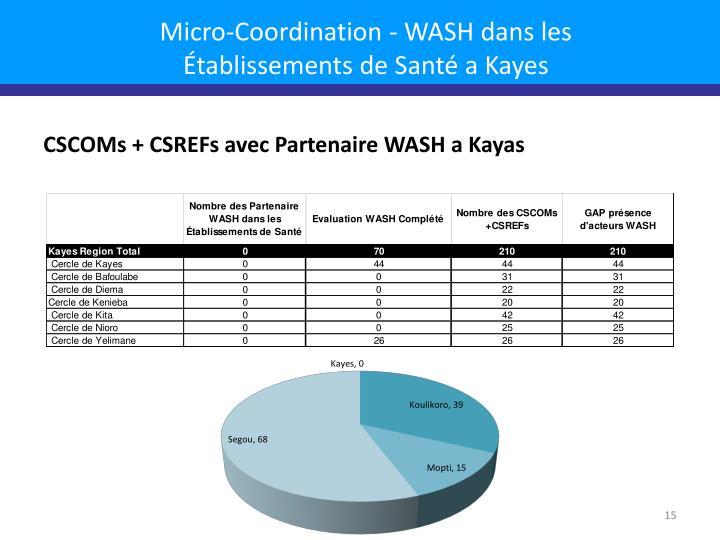 Micro-Coordination - WASH dans les