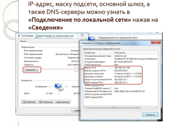 IP-,  ,  ,   DNS-