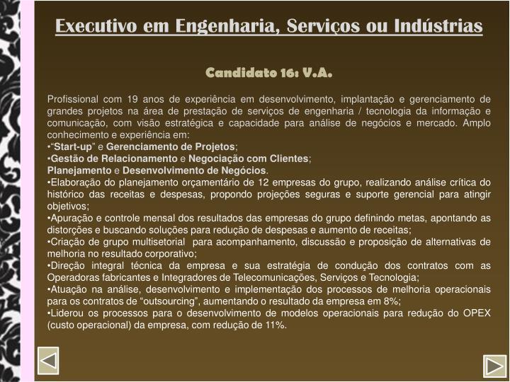 Executivo em Engenharia, Serviços ou Indústrias