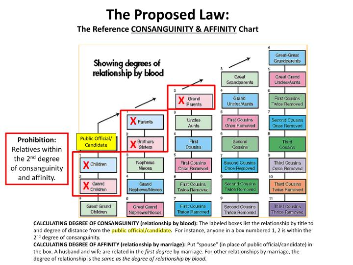 The Proposed Law: