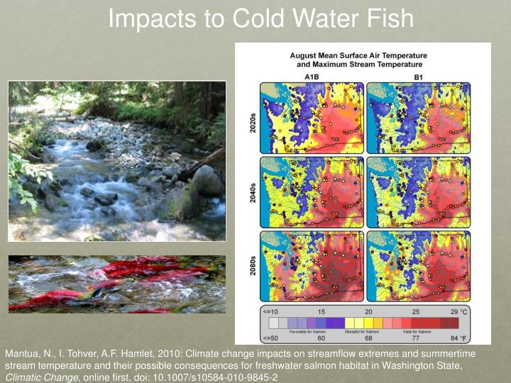 Impacts to Cold Water Fish