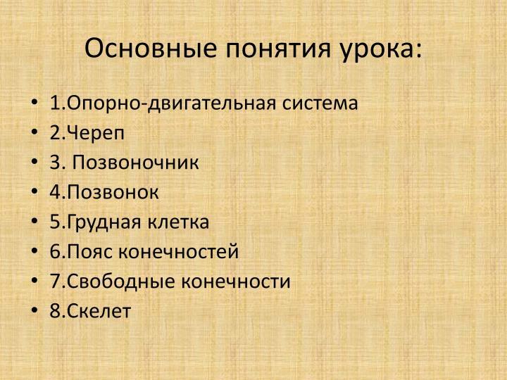Основные понятия урока: