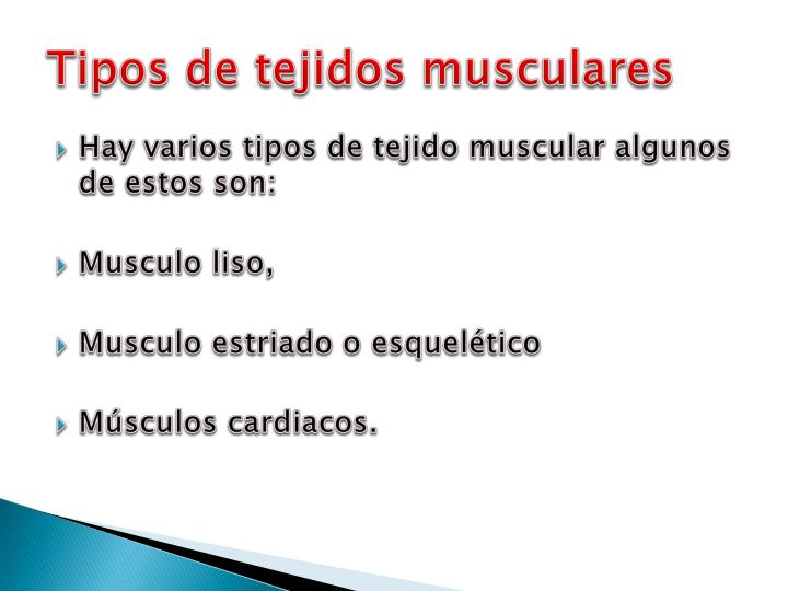 Ppt exposici n del tejido muscular powerpoint - Tipos de tejados ...