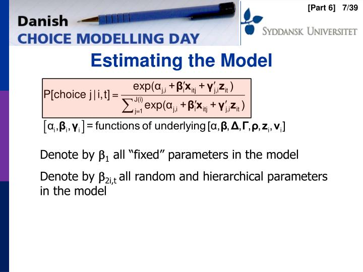 Estimating the Model