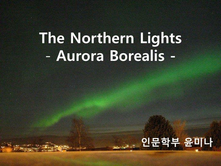 The northern lights aurora borealis