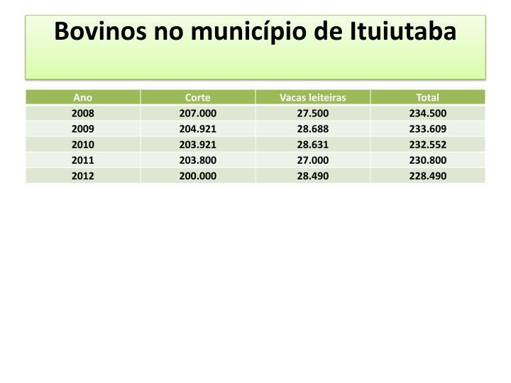 Bovinos no município de Ituiutaba