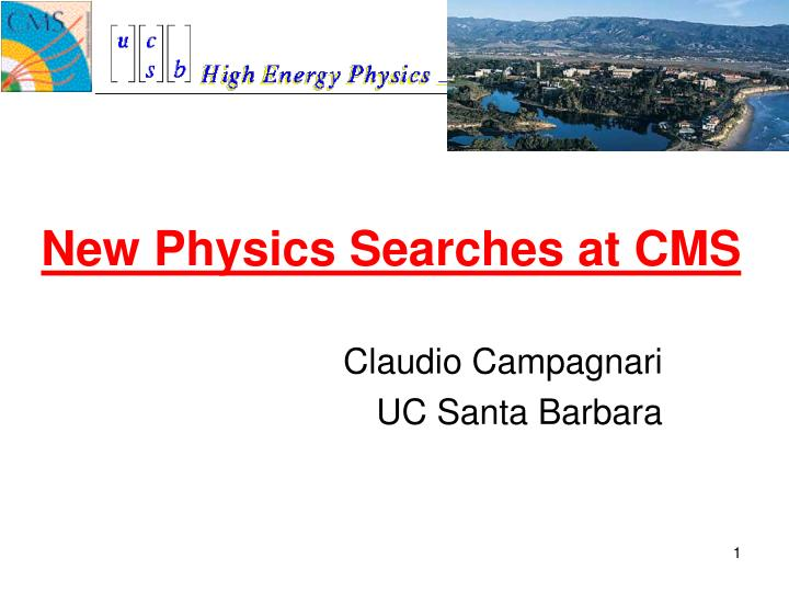 New physics searches at cms