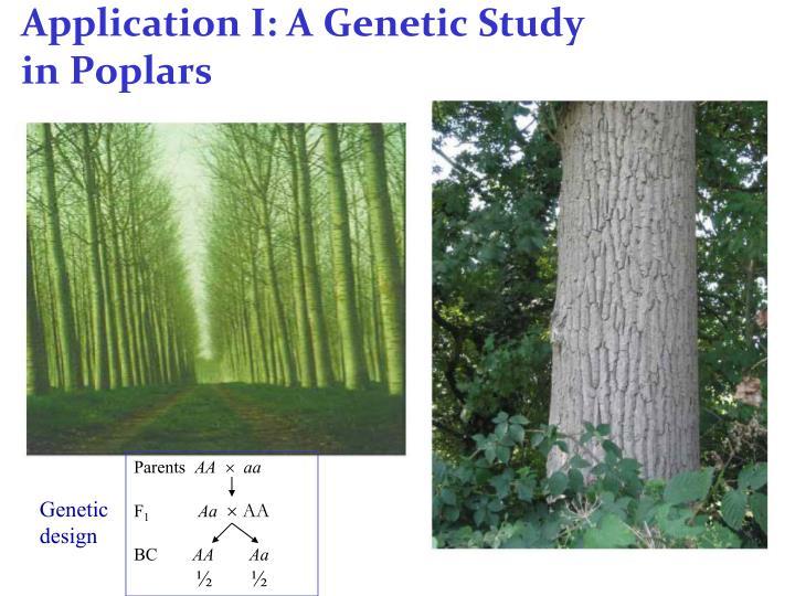 Application I: A Genetic Study
