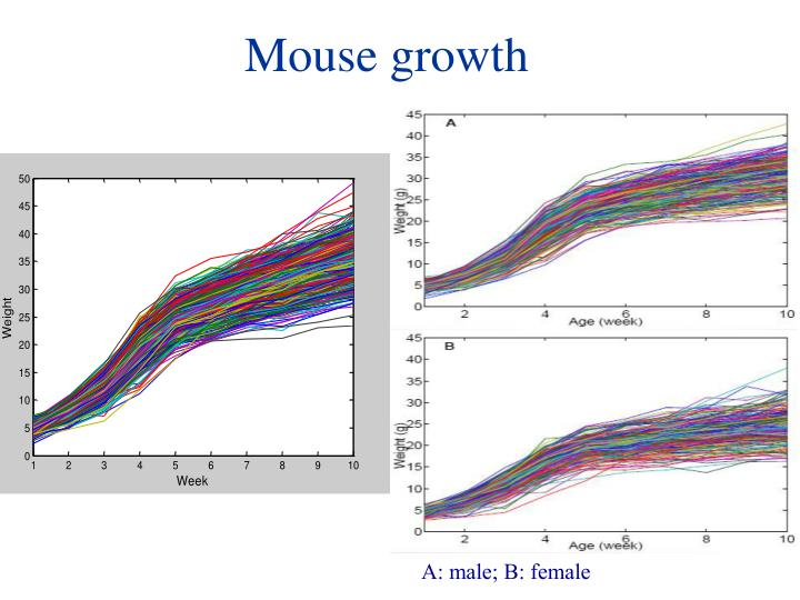 Mouse growth