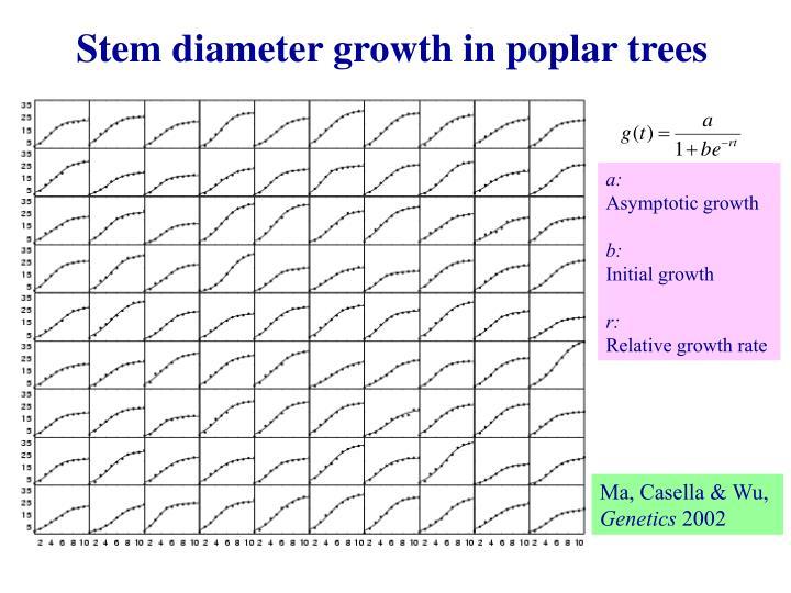 Stem diameter growth in poplar trees