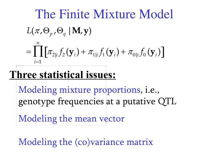 The Finite Mixture Model