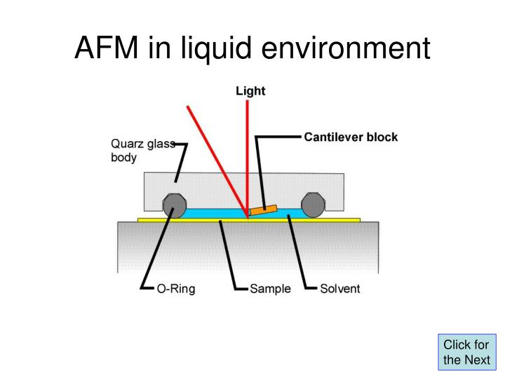 AFM in liquid environment