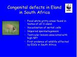 congenital defects in eland in south africa
