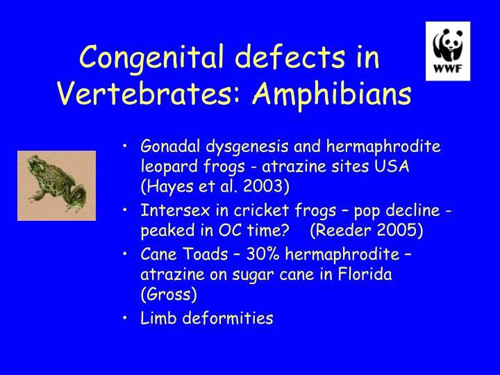 Congenital defects in
