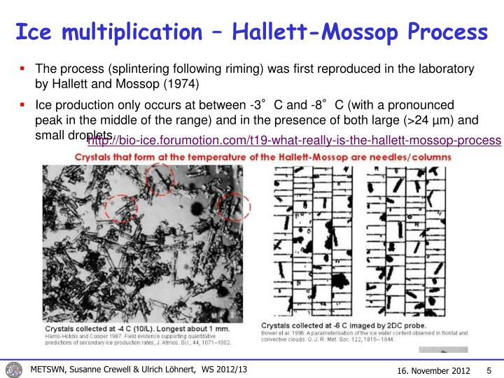 Ice multiplication – Hallett-Mossop Process
