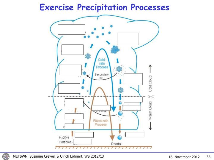 Exercise Precipitation Processes
