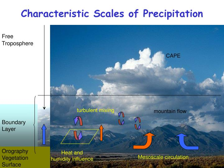 Characteristic Scales of Precipitation